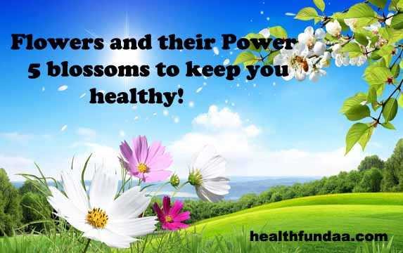 Flowers and their Power:  5 blossoms to keep you healthy!