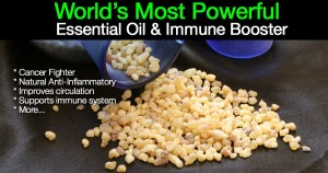 frankincense benefits of essential oils