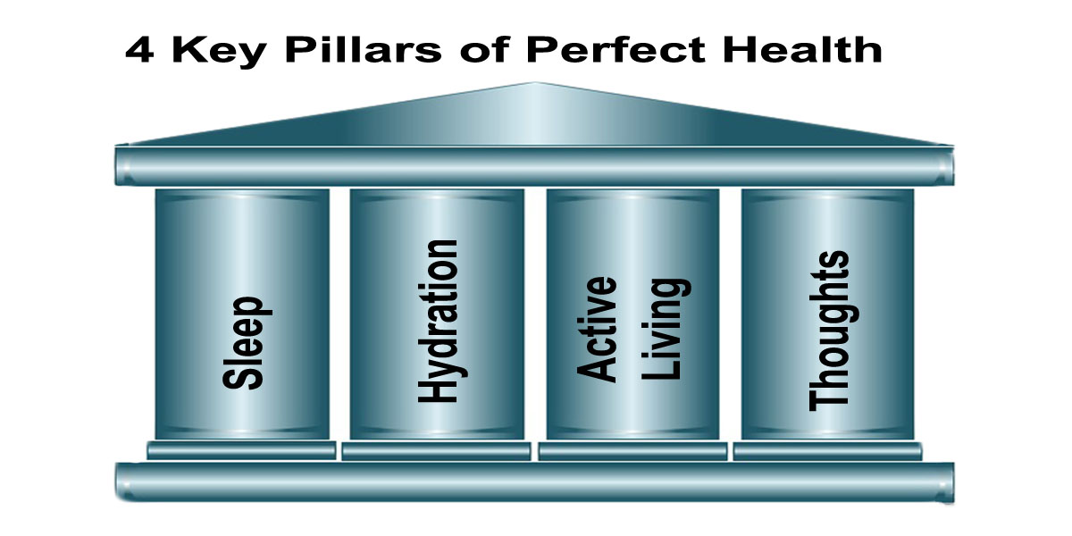 4 Key Pillars of Perfect Health