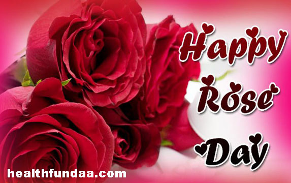 Rose Day 2017: The First Step To Valentine Week